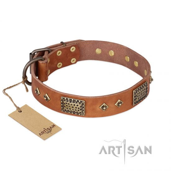 """Catchy Look"" FDT Artisan Decorated Tan Leather Bulldog Collar"