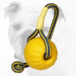 Foam Interactive Bulldog Ball for Training