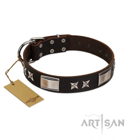 """Satin Beauts"" FDT Artisan Brown Leather Bulldog Collar with Stars and Plates"