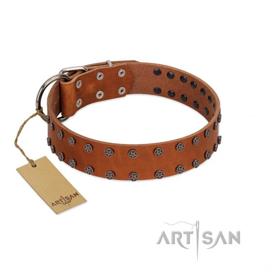"""Star Light"" Stylish FDT Artisan Tan Leather Bulldog Collar with Silver-Like Studs"