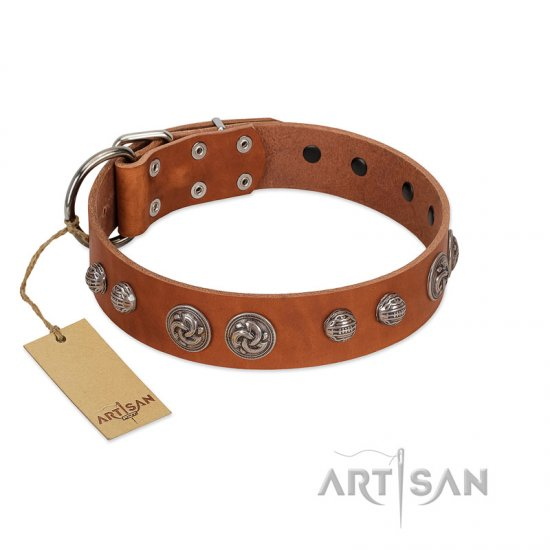 """Era Infinitum"" FDT Artisan Tan Leather Bulldog Collar Adorned with Chrome-plated Circles"