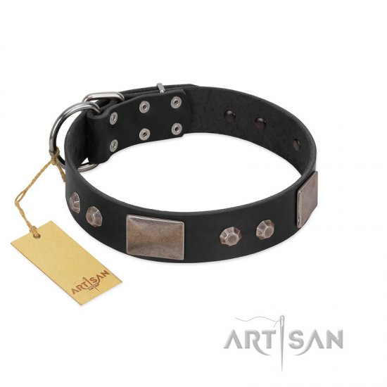 """Square Stars"" Modern FDT Artisan Black Leather Bulldog Collar with Square Plates and Studs"