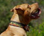 painted by our artists leather dog collar-custom for BullyPit