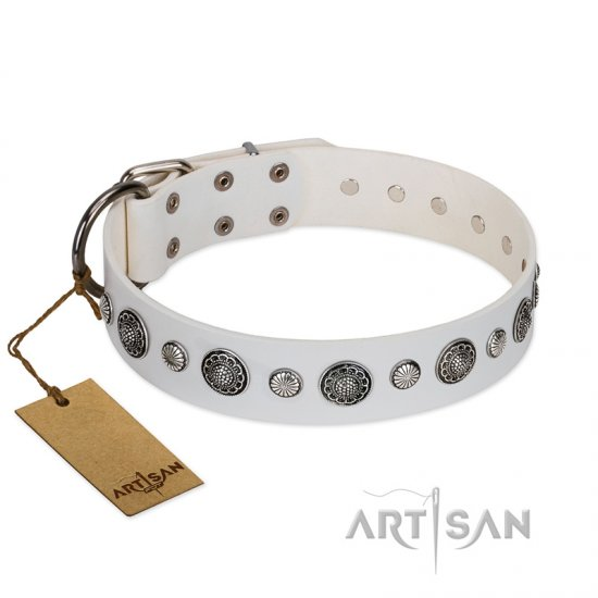 """Fluff-Stuff Beauty"" FDT Artisan White Leather Bulldog Collar with Silver-like Studs and Conchos"