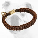 Exclusive Braided Leather Bulldog Choke Collar for Training and Walking