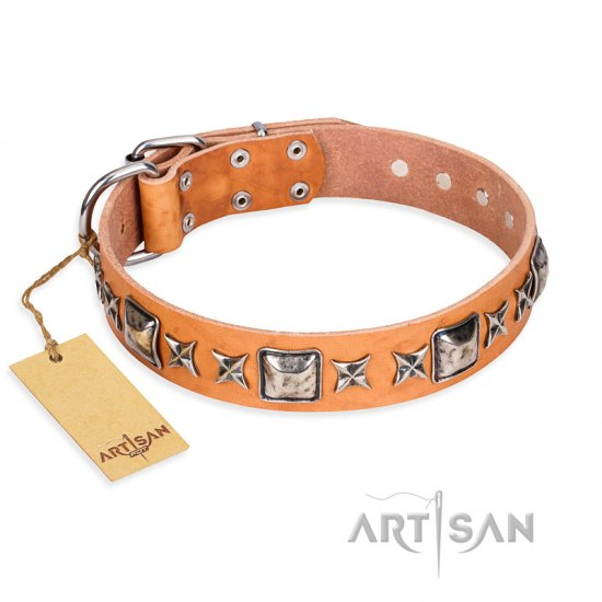 """Glamour Finery"" FDT Artisan Female Bulldog collar of natural leather with stylish old-looking circles"