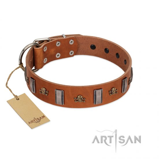 """Golden Crossbones"" Handmade FDT Artisan Tan Leather Bulldog Collar with Plates and Skulls"