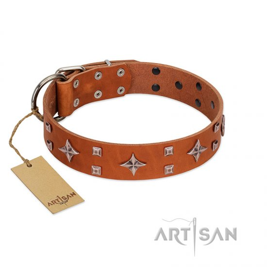 """Tawny Beauty"" FDT Artisan Tan Leather Bulldog Collar Adorned with Stars and Tiny Squares"