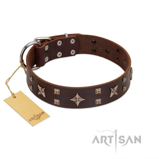 """Stars in Sands"" Modern FDT Artisan Brown Leather Bulldog Collar with Studs and Stars"