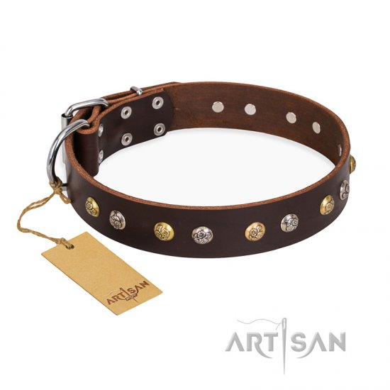 """Golden""n""Silver Luxury"" FDT Artisan Leather Bulldog Collar with Engraved Studs"