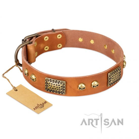 """Saucy Nature"" FDT Artisan Tan Leather Bulldog Collar with Old Bronze Look Plates and Skulls - Click Image to Close"