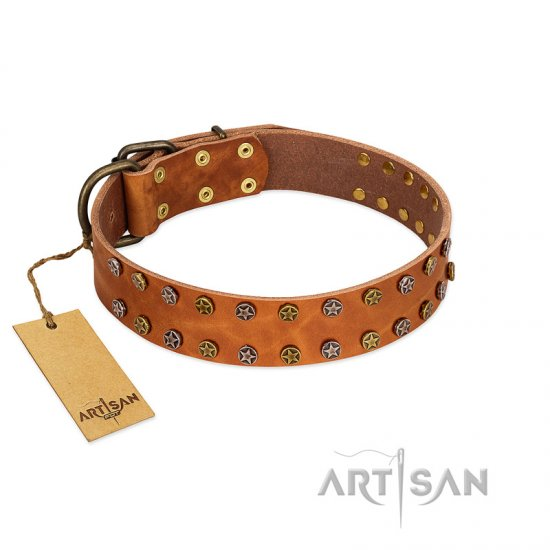"""Walk and Shine"" FDT Artisan Tan Leather Bulldog Collar with Antiqued Studs"