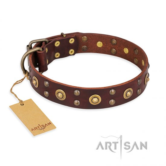 """Caprice of Fashion"" FDT Artisan Brown Leather Bulldog Collar with Round Decorations"