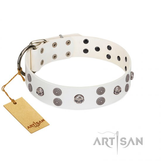 """Edgy Look"" FDT Artisan White Leather Bulldog Collar with Silver-like Skulls"