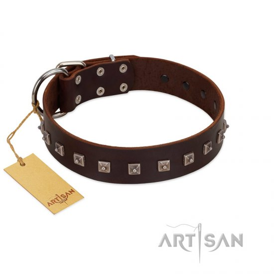 """Kingly Grace"" FDT Artisan Brown Leather Bulldog Collar with Silver-like Dotted Studs"