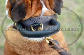 2 ply Agitation Training Leather Bulldog Collar with Handle
