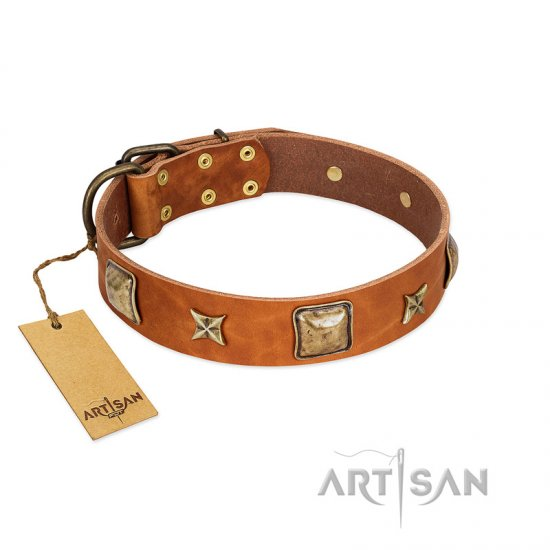 """Celtic Tunes"" FDT Artisan Tan Leather Bulldog Collar Adorned with Stars and Squares"