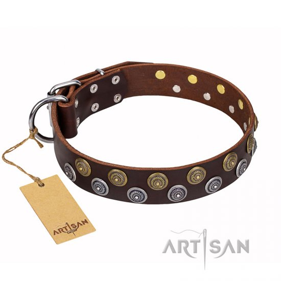 'Strong Shields' FDT Artisan Leather Bulldog Collar with Handset Exclusive Decor