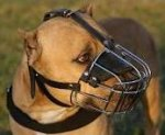 Adjustable Training BullyPit Wire Basket Muzzle