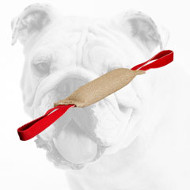 Excellent Quality Jute Bulldog Bite Tug