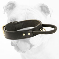 2 ply leather agitation Collar with handle for Bulldog Training
