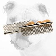 Comfortable Bulldog Brush with Handle