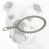 Chrome Plated Bulldog Choke Collar for Behavior Correction
