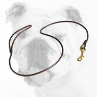 Round Leather Bulldog Show Leash