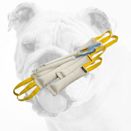 Fire Hose Bulldog Bite Tugs for Effective Training