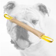 Strong Jute Bulldog Bite Tug