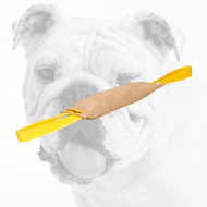 Sturdy Leather Bulldog Bite Tug with Two Handles