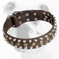 Reliable Leather Bulldog Collar with Brass Studs and Nickel Pyramids