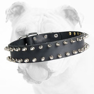 Fabulous Spiked Leather Bulldog Collar with 2 Rows of Spikes