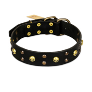 FDT Artisan 'Heavy Metal' Leather Bulldog Collar with Skulls and Studs 1 1/2 inch (40 mm)