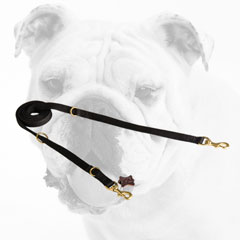 Multifunctional Nylon Bulldog Leash for Pleasant Walking
