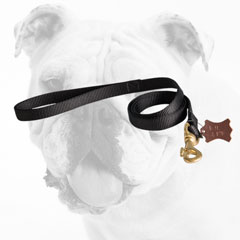 All Weather Nylon Bulldog Leash