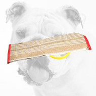Safe Jute Bulldog Bite Sleeve Cover