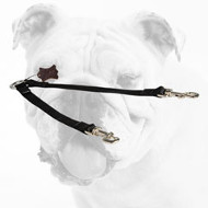 All Weather Nylon Bulldog Coupler