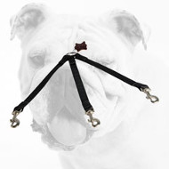 All Weather Triple Nylon Bulldog Coupler