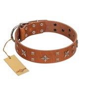 """Dreamy Gleam"" FDT Artisan Tan Leather Bulldog Collar Adorned with Stars and Squares"