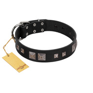 """Foregone Riches"" FDT Artisan Black Leather Bulldog Collar with Old Silver-like Square Studs and Pyramids"