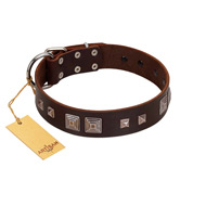"""Object of Virtu"" FDT Artisan Brown Leather Bulldog Collar with Old Silver-like Square Studs and Pyramids"