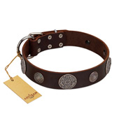 """Flashy Woof"" FDT Artisan Brown Leather Bulldog Collar with Chrome Plated Brooches"