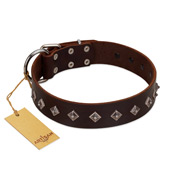 """Boundless Energy"" Premium Quality FDT Artisan Brown Designer Leather Bulldog Collar with Small Pyramids"