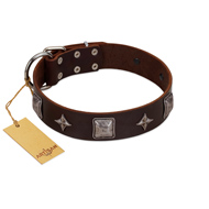 """Cold Star"" Designer FDT Artisan Brown Leather Bulldog Collar with Silver-Like Adornments"