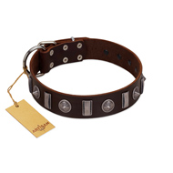 """Spiky Way"" FDT Artisan Brown Leather Bulldog Collar with Silver-Like Decorations"