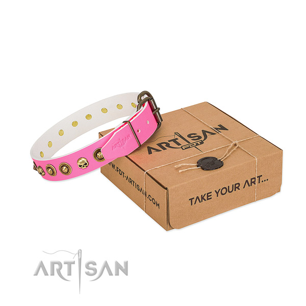 Genuine leather collar with extraordinary studs for your canine