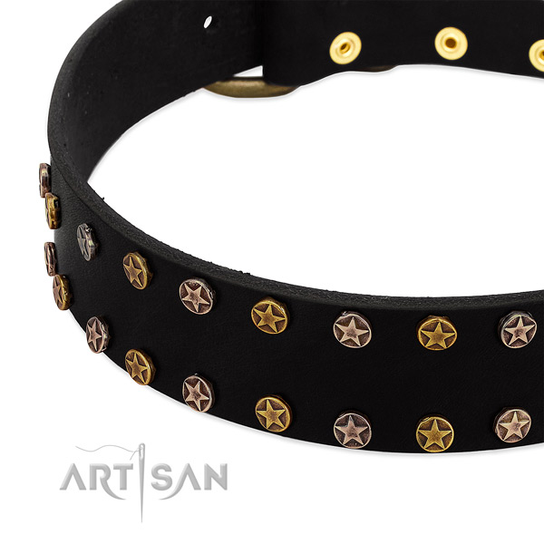 Unique embellishments on full grain genuine leather collar for your four-legged friend
