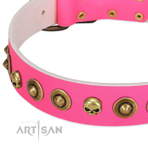 Stylish adornments on genuine leather collar for your four-legged friend