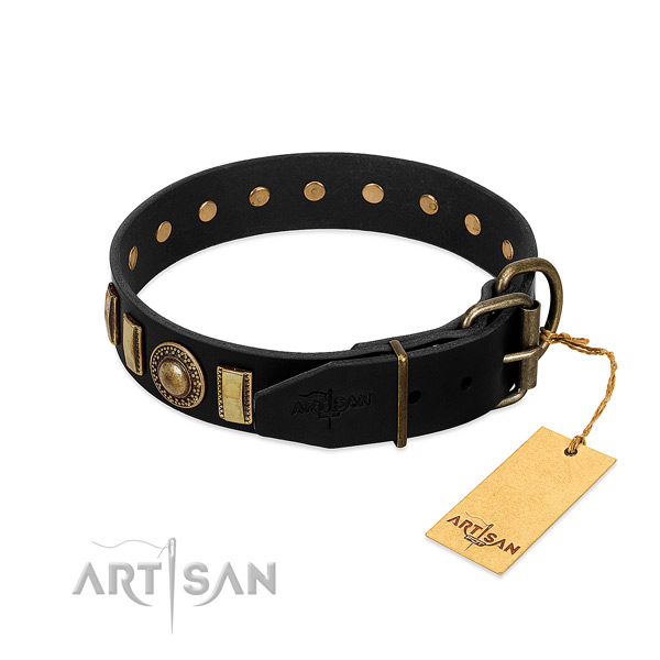 Durable full grain leather dog collar with studs